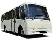 Заказ, аренда автобусов, микроавтобусов